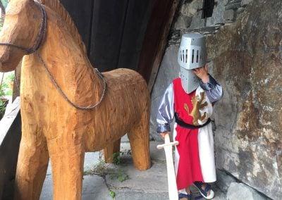 Ridder og hest